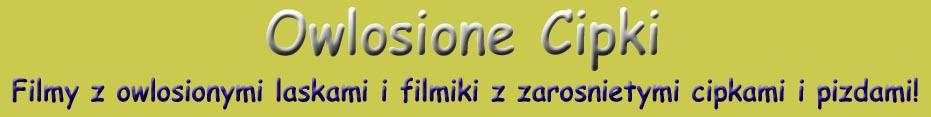 Owlosionecipki logo